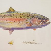 Rainbow Trout (Right)