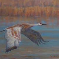 Pat Branting - Morning Flight